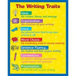 writing essay conventions We will go over more information about writing essays next time writing conventions and writing strategies test-taking tips #3 what is the purpose of writing.
